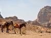 jordanie-petra-0615