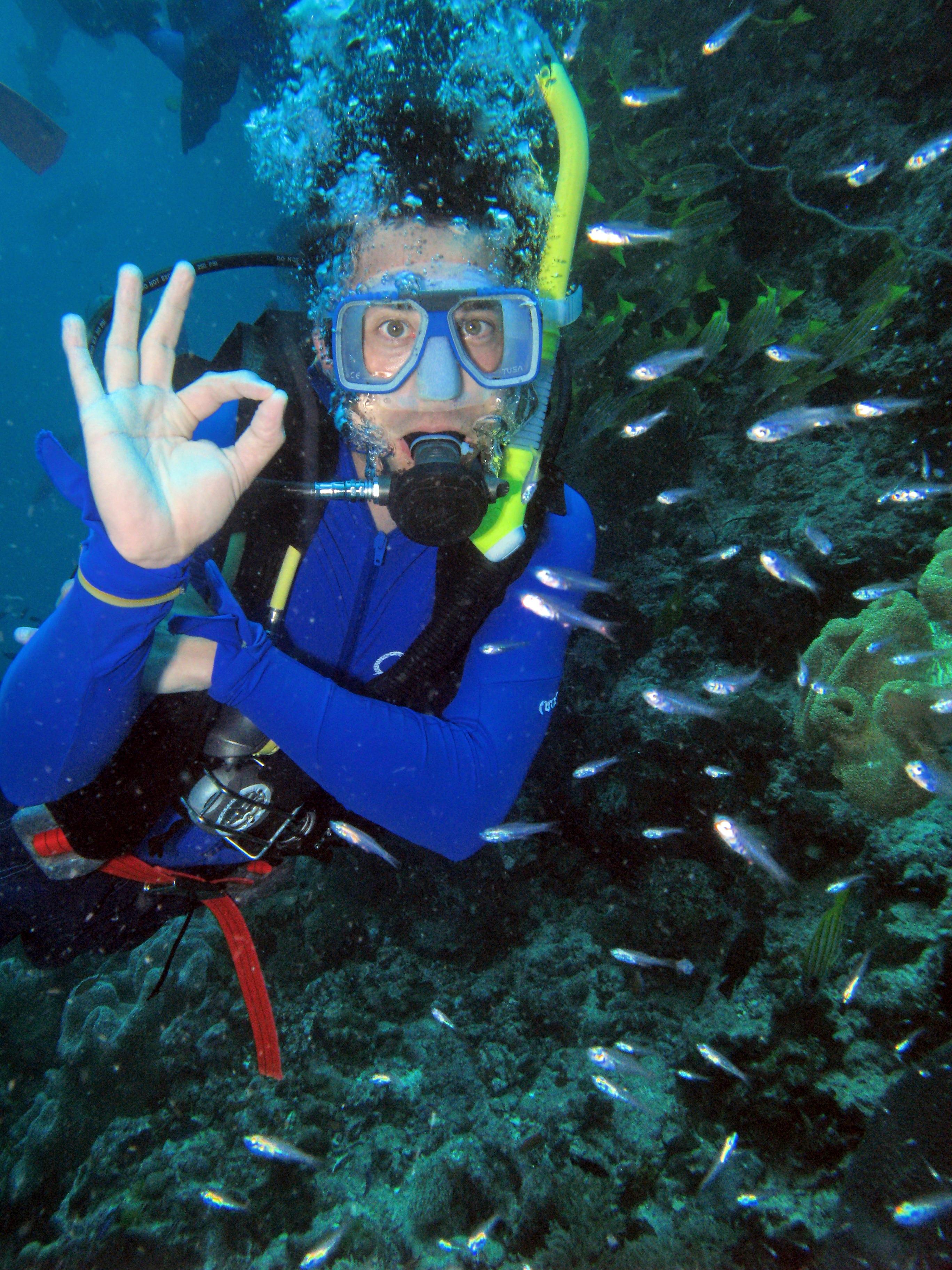 zie jw in het outerbarrier reef bij agincourt-pourtdouglas